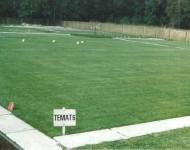 Trawnikowe poletka doświadczalne inż A. Hempel